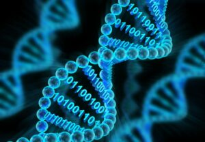 DNA molecules with binary code