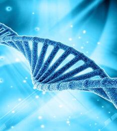 Post thumbnail Overview of EU Regulatory Landscape for Regenerative Medicines