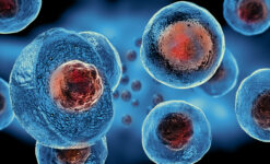 Post thumbnail Expedited access of cellular and gene therapy products: The EU versus the US